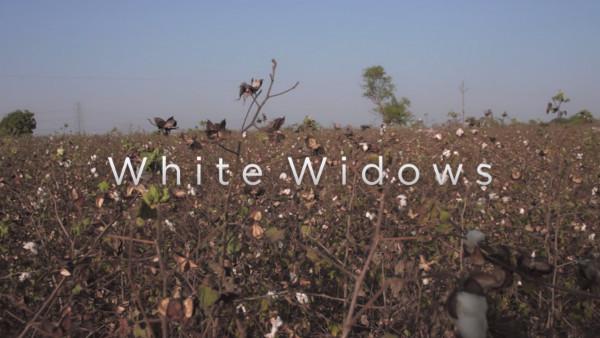 artikel/Film White Widows_web.jpg