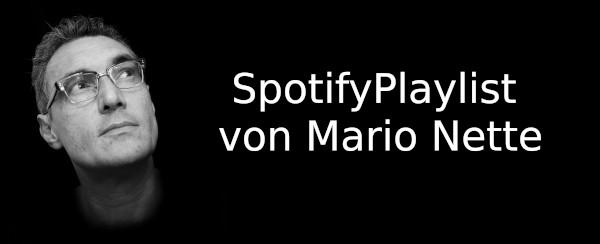 artikel/Fragen aus Meuselwitz/SpotifyPortrait.jpg