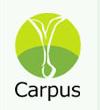 artikel/geborgte Zukunft/carpus_Logo.png
