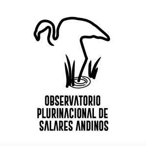 artikel/geborgte Zukunft/cropped-observatorio-salares-logo-2.png